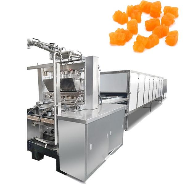Small Scale Jelly Gummy with Bear Molds and Gummy Candy Making Machine